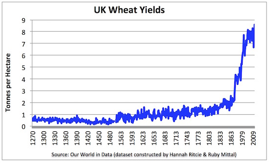 1uk wheat yields